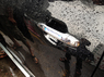 Дверные ручки (С подсветкой) YH11002 TOYOTA CAMI / RUSH (06-UP)